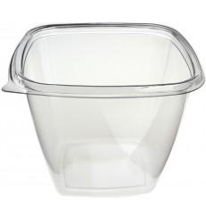 Saladier de Plastique Carré PET 500ml (50 Utés)