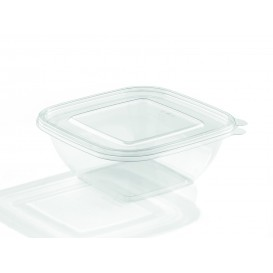 Bol en Plastique PET 750ml 190x190x40mm (50 Utés)
