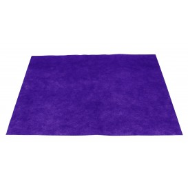 Set de Table en PP Non-Tissé Lilas 30x40cm 50g (500 Utés)