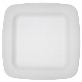Assiette plate en Foam Blanc 260 mm (600 Uds)