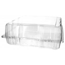Boîte à charnière Pour Pâtisserie PET 25x25x10cm (20 Utés)