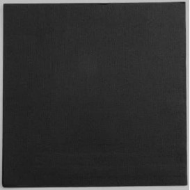 Serviette Papier Double Point 25x25cm Noir (2100 Utés)