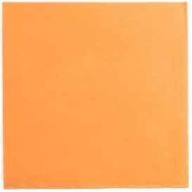 Serviette Papier Orange 2E Molletonnée 33x33cm (50 Utés)