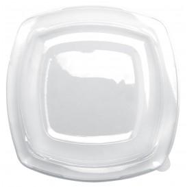 Couvercle Plastique Réutilisable Transp. PET pour Assiette 230mm (25 Utés)