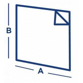 Sachet Ingraissable Ouverture latérale Journaux 16x16,5cm (500 Utés)