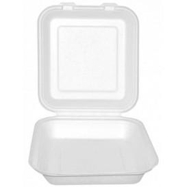 Boîte Bio en Canne à Sucre Blanc 20x20x7,5cm (50 Utés)