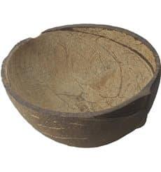 Bol Noix de Coco Naturelle de 150ml (10 Unités)