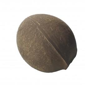 Bol Noix de Coco Naturelle de 150ml (100 Unités)