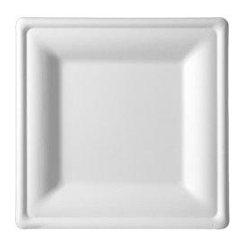 Assiette Carrée Canne à Sucre Blanc 260x260mm (40 Utés)