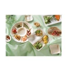 Assiette carrée en Feuilles de Palmier 4C 20,5X20,5cm (100 Unités)