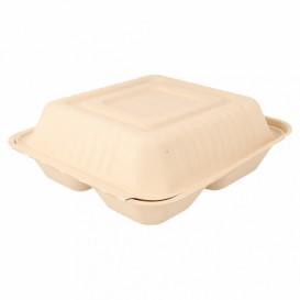 Boîte en Canne à Sucre Naturelle 3C 20x20x7,5cm (200 Utés)