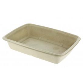Boîte Canne à Sucre PLA 950ml 23x16,5x5cm (75 Utés)