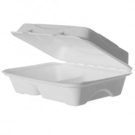 Emballage Canne à Sucre Blanche 2C 23x15x7,5cm (250 Utés)
