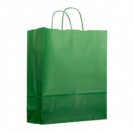 Sac en Papier Vert avec Anses 100g 25+11x31cm (200 Utés)