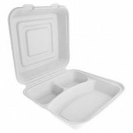 Boîte Bio en Canne à Sucre Blanc 3C 24x23x7,6cm (200 Utés)