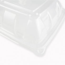 Couvercle en Plastique PP Dôme Barquette 230x230mm (50 Utés)