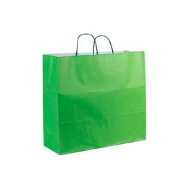 Sac en Papier Vert avec Anses 100g 22+9x23cm (25 Utés)