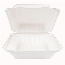 Emballage Canne à Sucre avec PLA Blanche 20x20x7,5cm (200 Utés)