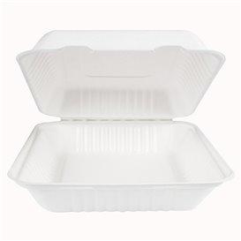 Emballage Canne à Sucre avec PLA Blanche 23x23x7,5cm (50 Utés)