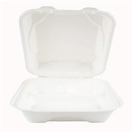 Emballage Canne à Sucre Blanche 3C 23x23x7,5cm (50 Utés)