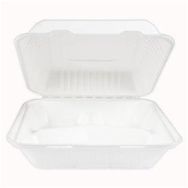 Emballage Canne à Sucre avec PLA Blanc 3C 23x23x7,5cm (50 Utés)