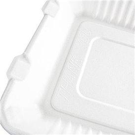 Emballage Canne à Sucre avec PLA Blanc 3C 23x23x7,5cm (200 Utés)
