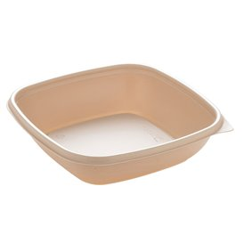 Barquette Plastique PP Crème 500ml 16,5x16,5x4cm (50 Utés)