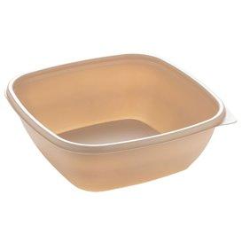 Barquette Plastique PP Crème 750ml 16,5x16,5x6cm (50 Utés)